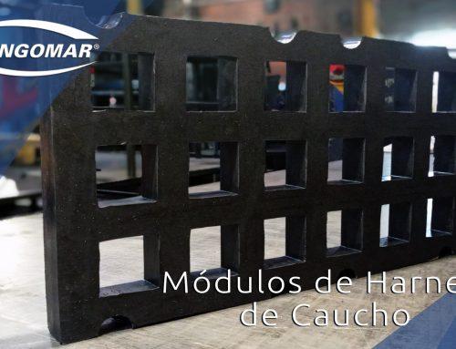 Módulos de Harnero en Caucho